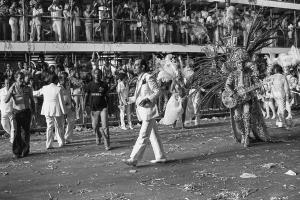 Parade of Recreative Society  Samba School Beija-Flor de Nilópolis.