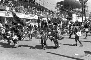 Desfile do Grêmio Recreativo Escola de Samba Império da Tijuca
