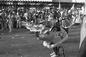 Desfile do Grêmio Recreativo Escola de Samba Portela