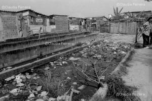 Favela do Sapo e da Perereca