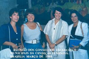 Reunião dos Conselhos Estaduais e Municipais da Condição Feminina